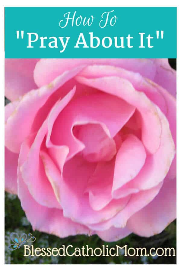 "Ideas on how to ""Pray About it."" Image of a pink rose in full bloom."