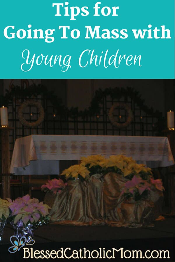 Have you ever received a look from someone at Mass when your child is not quiet? Read on for tips for going to Mass with young children.