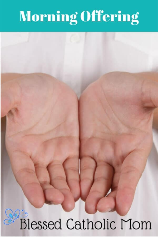 Image of two open hands together held out in a gesture of offering.