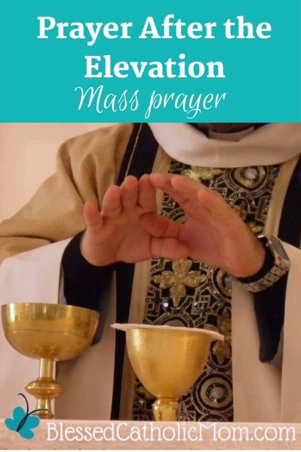 Image of the hands of a priest with his hands over the chalice and ciborium after the consecration during the Mass. The text above the image reads:Prayer After the Elevation Mass Prayer