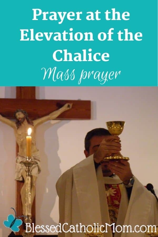 Image of a priest at the altar holding the chalice with the Blood of Christ for the faithful to adore. The text above the image reads: Prayer at the Elevation of the Chalice Mass Prayer
