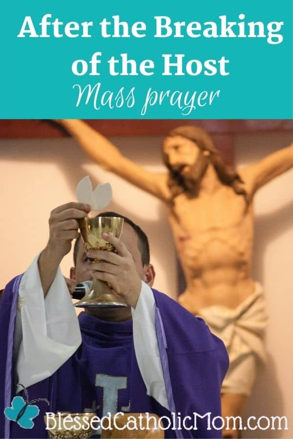 Image of a priest during the Catholic Mass holding up a broken Host above a Chalice. A wooden image of Jesus crucified is on the wall behind him. Words above the image read: After the Breaking of the Host Mass Prayer