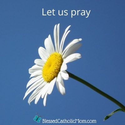 Image of a white daisy in bloom with a blue sky in the background. Words above the image read: let us pray. The logo for Blessd Catholic Mom is below the image.
