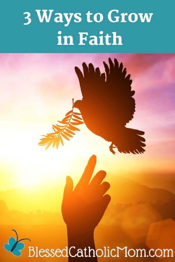Image of a pink and orange sunset behind the sillouette of a dove with a branch about to land on a hand outstretched toward it. At the top pf the image are thee words: 3 Ways to Grow in Faith. At the bottom is the logo for Blessed Catholic Mom.