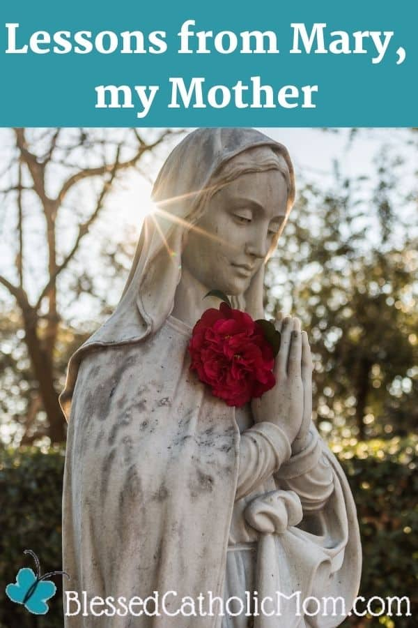 Image of a white statue of the Blessed Virgin mary our Mother with red roses in her hands. Worda above the image read: Lessons from Mary, my Mother.