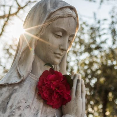 Image of a white statue of the Blessed Virgin mary our Mother with red roses in her hands.