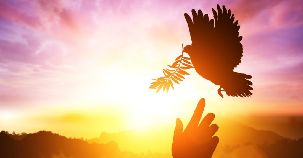 Image of a pink and orange sunset behind the sillouette of a dove with a branch about to land on a hand outstretched toward it.