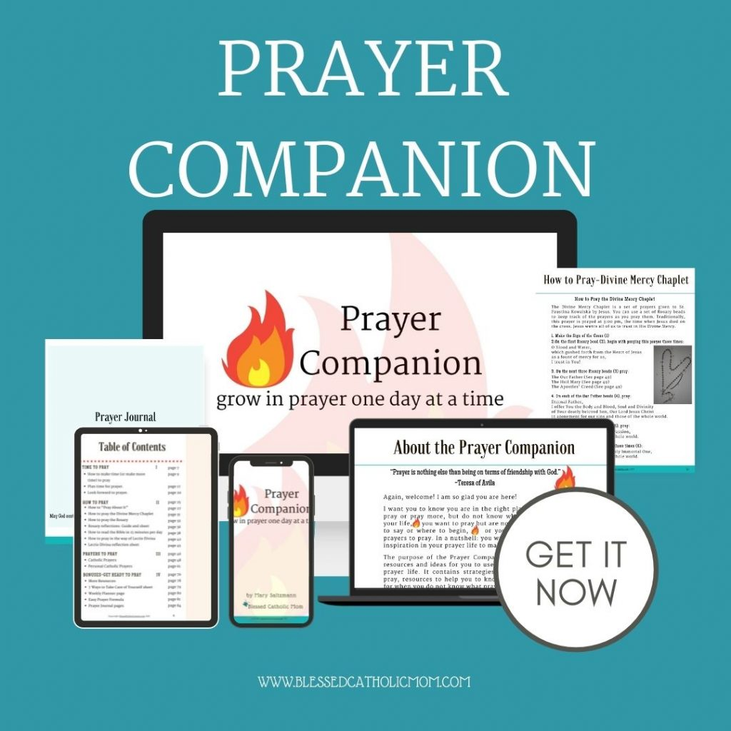 Image of pages of the Prayer Companion: Grow in prayer one day at a time from Blessed Catholic Mom.