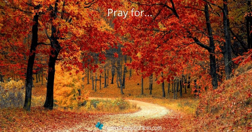 Image of a forest in autumn. The leaves on the trees are yellow and orange. A dirt path winds through the trees. the words pray for... are at the top of the image and the logo for Blessed Catholic Mom is at the bottom.